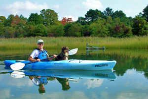 Kayaking the Indian River Marina