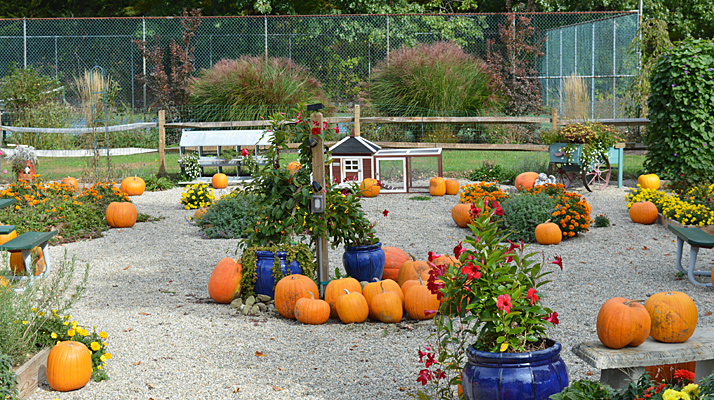 Fall Pumpkin Patch at Riverdale Farm Campsites